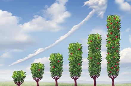 Icon Advanced Capital & Estate Planning
